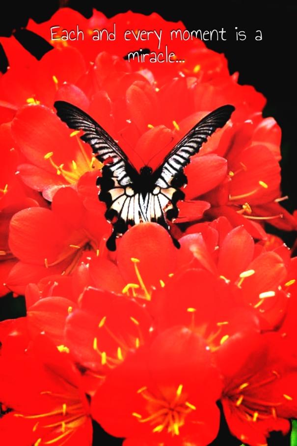 http---www.pixteller.com-pdata-t-l-410074