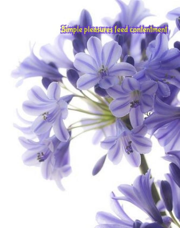 http---www.pixteller.com-pdata-t-l-443517