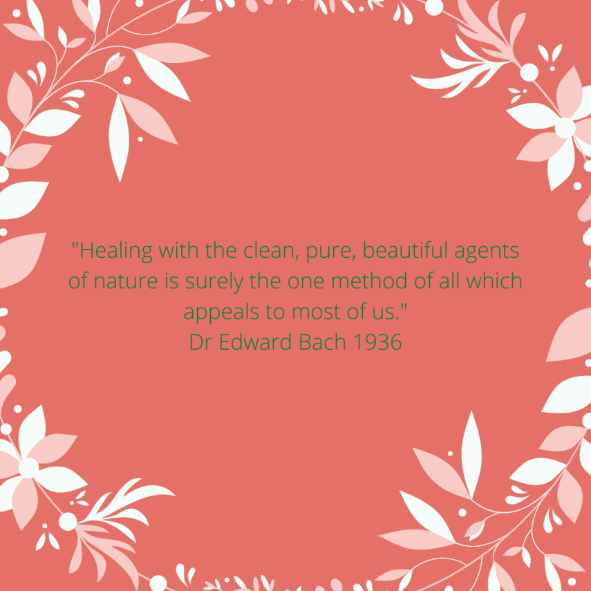 _Healing with the clean, pure, beautiful agents of nature is surely the one method of all which appeals to most of us._ Dr Edward Bach 1936